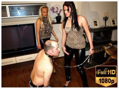 Leashed bitch slapped hard